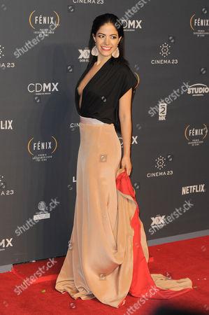 Editorial picture of Fenix Iberoamerican Film Awards, Arrivals, Mexico City, Mexico - 25 Nov 2015