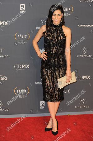 Ximena Ayala arrives at The Fenix Iberoamerican Film Awards at Teatro de la Ciudad
