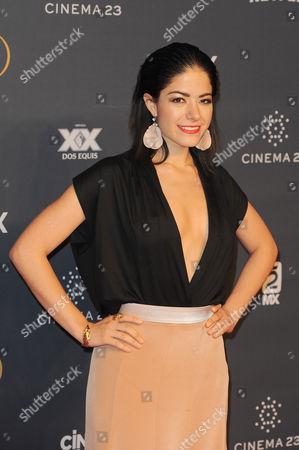 Stock Picture of Adriana LLabres arrives at The Fenix Iberoamerican Film Awards at Teatro de la Ciudad