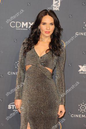 Stock Image of Adriana Louvier arrives at The Fenix Iberoamerican Film Awards at Teatro de la Ciudad