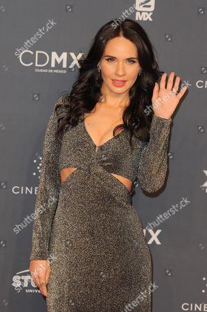 Adriana Louvier arrives at The Fenix Iberoamerican Film Awards at Teatro de la Ciudad