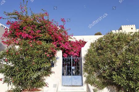 A flower decorated house entrance, Fira, Santorini, Greek