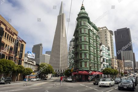 Transamerica Pyramid and Francis Coppola Building, San Francisco, California, USA