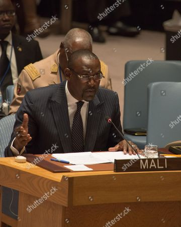Malian Foreign Minister Abdoulaye Diop