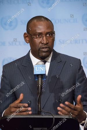 Foreign Minister Abdoulaye Diop