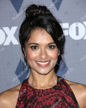 Stock Picture of Dilshad Vadsaria