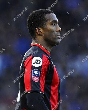 Sylvain Distin of AFC Bournemouth during Portsmouth vs AFC Bournemouth, Emirates FA Cup Football at Fratton Park