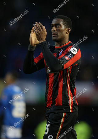 Sylvain Distin of Bournemouth