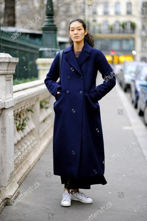 Editorial picture of Street Style, Spring Summer 2016, Haute Couture, Paris Fashion Week, France - 27 Jan 2016