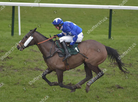 Streets of Promise (Liam Treadwell) after taking the last and going on to win The Haygain Hay Steamers Clean Healthy Forage Mares' Handicap Hurdle Race  @ Towcester Racecourse. 17.2.16. Pic: Hugh Routledge