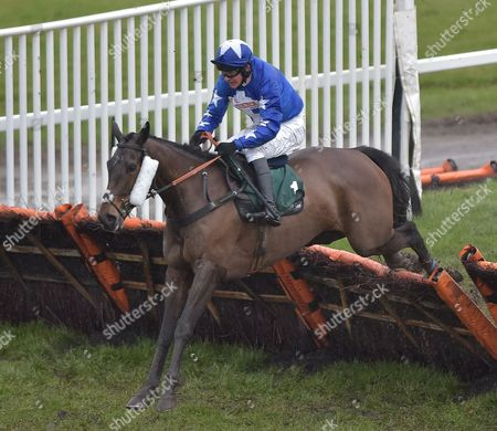 Streets of Promise (Liam Treadwell) takes the last before going on to win The Haygain Hay Steamers Clean Healthy Forage Mares' Handicap Hurdle Race  @ Towcester Racecourse. 17.2.16. Pic: Hugh Routledge