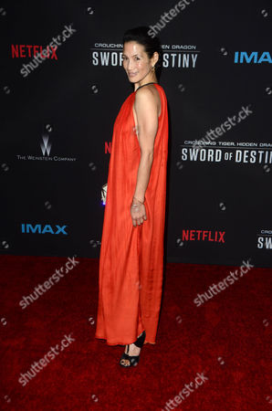Editorial image of 'Crouching Tiger, Hidden Dragon: Sword Of Destiny' film premiere, Los Angeles, America - 22 Feb 2016