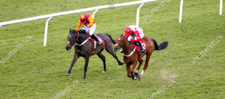 Stock Picture of Poker School and Toby Wheeler (pink) winning The Watch Racing UK On 3 Devices Handicap Hurdle from Sir Ivan (orange) Kempton
