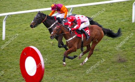 Editorial image of Horse Racing - 27 Feb 2016
