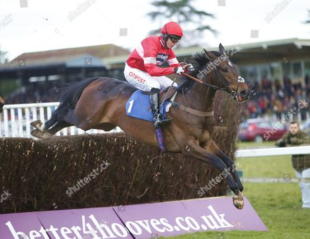 Orbasa and Noel Fehily win the Toteplacepot Josh Gifford Memorial Novices' Chase at Fontwell.