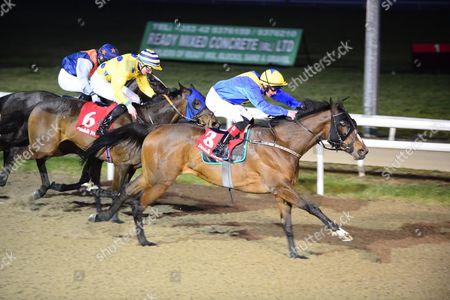 Editorial photo of Horse Racing - 4 Mar 2016