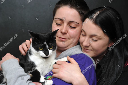 Editorial image of Cat missing for two months found 200 miles from home, Cardiff, Wales - 03 Feb 2016