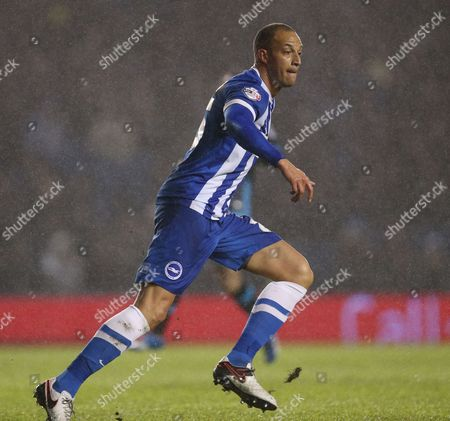 Brighton striker, Bobby Zamora (25) during the Sky Bet Championship match between Brighton and Hove Albion and Sheffield Wednesday at the American Express Community Stadium, Brighton and Hove