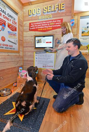Crufts Dog Show - Gun Dogs Day 1 At The National Exhibition Centre Birmingham West Midlands. - Worlds First Dog Selfie As 18 Month Old Spaniel 'gabby' Gets Her Selfie Done With Owner Richard Zachary From Tewkesbury Gloucestershire.