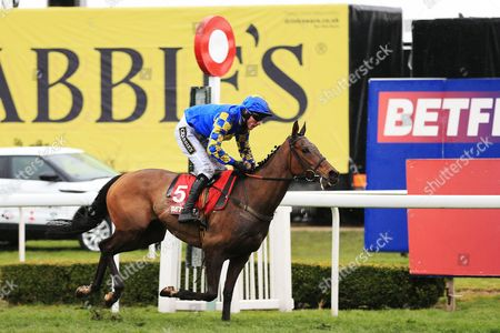 Maggio ridden by James Reveley wins the Auroras Encore race at Aintree