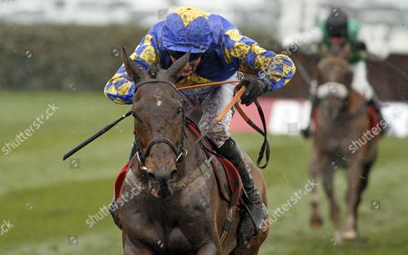 MAGGIO (James Reveley) wins The Betfred Handicap Chase Aintree