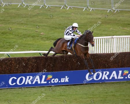 Stock Photo of SPECIAL CATCH and James Reveley win at AYR