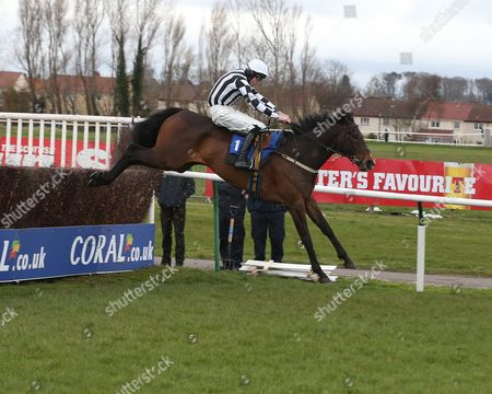 SPECIAL CATCH and James Reveley win at AYR