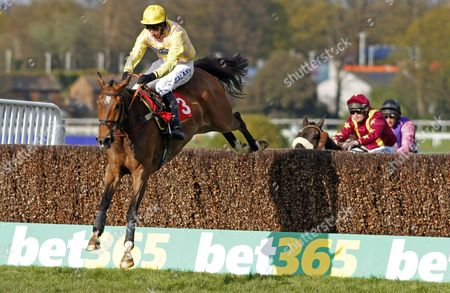 JUNCTION FOURTEEN (Daryl Jacob) wins The bet365 Josh Gifford Novices Handicap Chase Sandown
