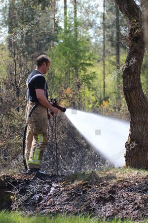 Editorial image of Fire in Burghfield forest on the Englefield Estate, Berkshire, Britain - 04 May 2016