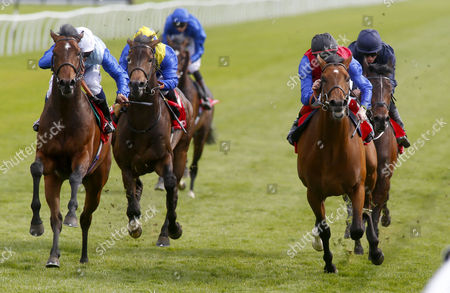 Humphrey Bogart and Sean Levey (white cap) winning The Betfred Derby Trial Stakes from Carntop Lingfield
