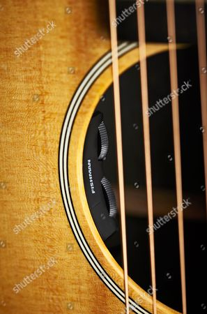 Detail Of The Fishman Sonitone Preamp On A Martin 00x1ae Electro-acoustic Guitar