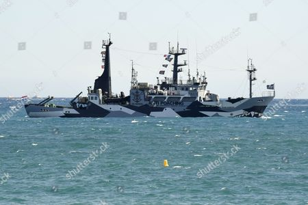 Stock Picture of Sam Simon' a ship Anti Poaching of the Association no profit Sea Shepherd Conservation Society, which deals of the protection of the sea