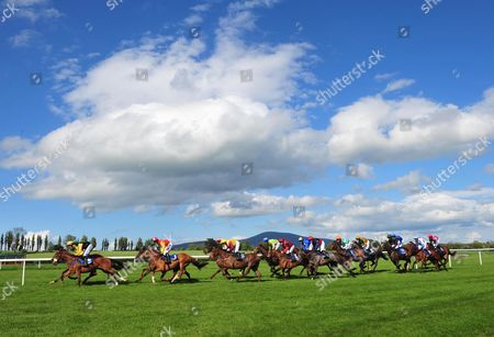 Clonmel Action from the Ancient East Mares Maiden Hurdle won by SARAH JOYCE & Mark Walsh (black gold sleeves in fromt)