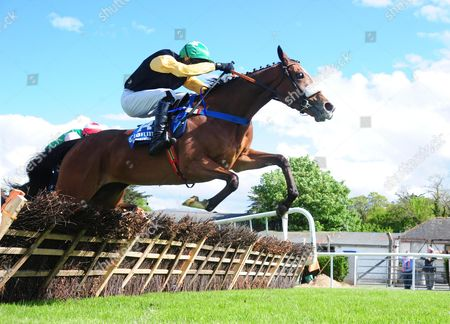 CLONMEL SARAH JOYCE and Mark Walsh win the Ancient East Mares Maiden Hurdle. HEALY RACING