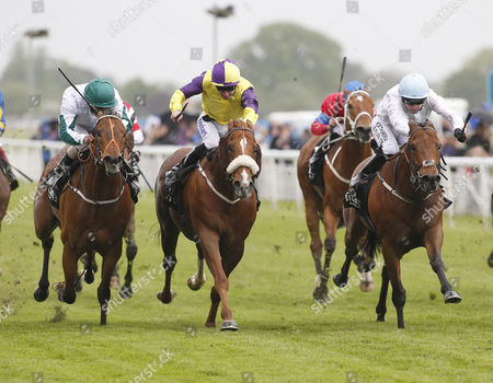 HARRY HURRICANE and Robert Winston (right) Win the titanbet.co.uk Spring Sprint (Handicap Stakes) for trainer George Baker. In 2nd Kevin Ryan's BOGART ridden by Tom Eaves (yellow/purple) In 3rd Dandy Nichols KIMBERELLA ridden by Royston Ffrench. YORK RACECOURSE
