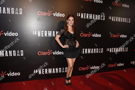 Editorial image of 'La Hermandad' TV series premiere, Mexico City, Mexico - 23 May 2016