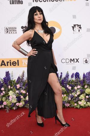 Stock Photo of Laura de Ita