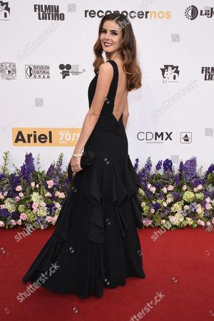 Editorial picture of 58th Ariel Awards, Auditorio Nacional, Mexico City, Mexico - 28 May 2016