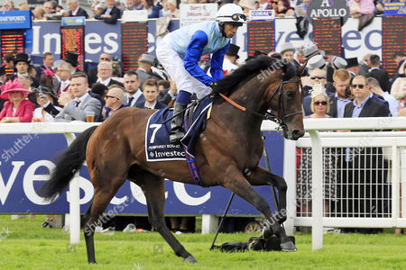 , Epsom, GB, Humphrey Bogart with Sean Levey up at the parade canter.