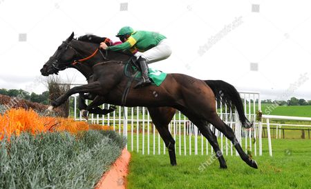 Stock Picture of DOWNPATRICK. WESTERN GOOSE and Barry Cash (near) clears the final fence to win from AMINABAD for trainer Keith Clarke.