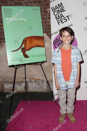 "Editorial image of The New York Premiere of ""Wiener-Dog"" for BAMcinemaFest 2016, New York, USA - 17 Jun 2016"