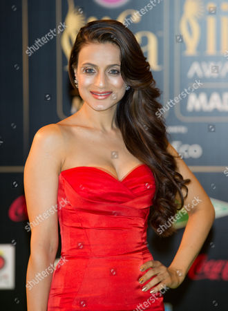 Stock Picture of Amisha Patel