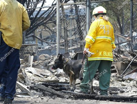 Diesel, a search and rescue dog from the Santa Clara County Sheriff's Department, and his handler, Kris Black, search the rubble of a home destroyed by a fire that swept through the area near Lake Isabella in Squirrel Valley