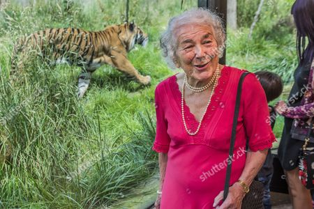 Editorial picture of BookTrust Lifetime Achievement Award at London Zoo, UK - 06 Jul 2016