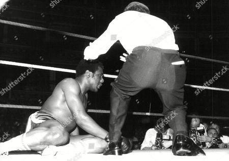 Boxing: Tony Moore Is Ko'd By Frank Bruno At The Royal Albert Hall. Box 681 1027041626 A.jpg.