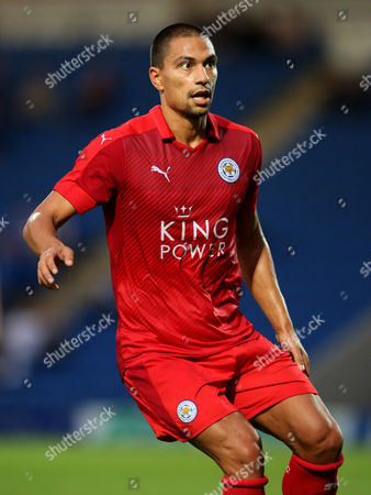 Gokhan Inler of Leicester City