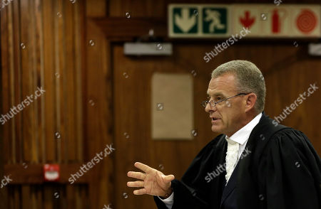 South Africa's chief state prosecutor Gerrie Nel speaks during the state appeal against Oscar Pistorius's six year murder sentence at the high court in Johannesburg, South Africa