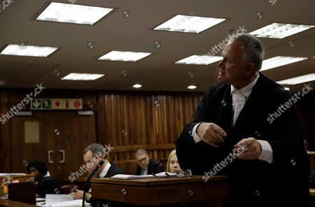 Barry Roux Defence lawyer, Barry Roux, speaks during the state appeal against Oscar Pistorius's six year murder sentence, at the high court in Johannesburg, South Africa