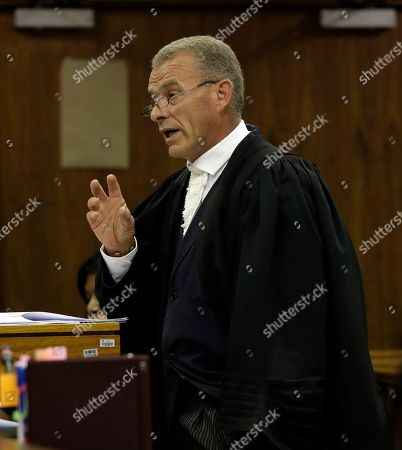 South African chief state prosecutor Gerrie Nel, speaks during the state appeal against Oscar Pistorius's six year murder sentence, at the high court in Johannesburg, South Africa