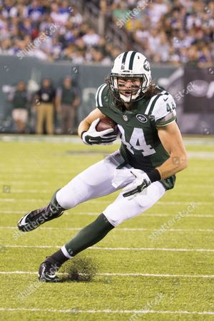 New York Jets tight end Zach Sudfeld (44) in action